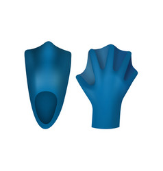 fins and gloves for swimming vector image