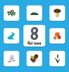 flat icon nature set of peak bird champignon and vector image