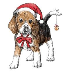 beagle hat vector image vector image