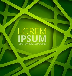 Green web texture vector image vector image