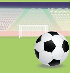 A soccer football field with soccer ball vector