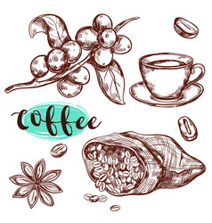 coffee branch icon set vector image