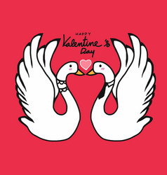 couple swans lover kissing cartoon vector image