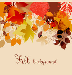 fall leaves in bright autumnal colors background vector image