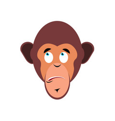 monkey surprised emoji marmoset astonished vector image