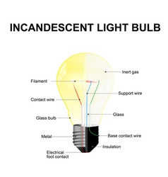 Parts of a modern incandescent light bulb vector