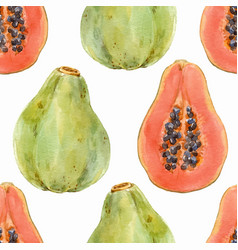 watercolor papaya pattern vector image