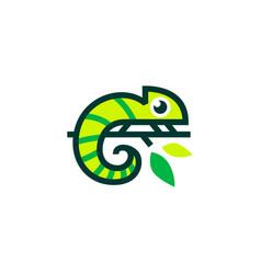chameleon logo icon vector image