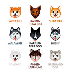Cute dog icons set ii vector