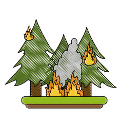forest in fire vector image