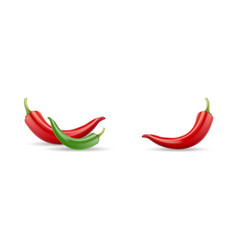 Mexican jalapeno red and green hot chili pepper vector