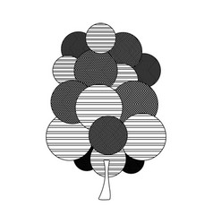 Monochrome silhouette tree plant forest with vector