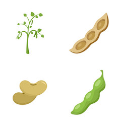 soybean soy beans seed icons set flat style vector image