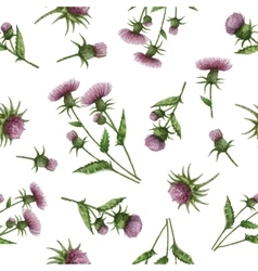 Watercolor seamless pattern with milk Thistle vector image