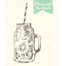 Drawn homemade lemonade sketch vector image