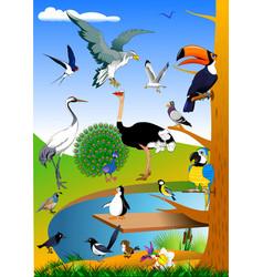 Birds in nature vector