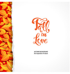 bright leaves blank vector image
