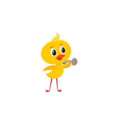 cute baby chicken character doing sport exercises vector image