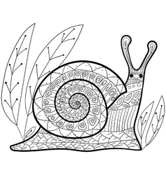 Cute snail adult coloring book page vector image