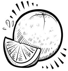 doodle orange vector image vector image