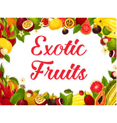 Poster of tropical exotic fruits harvest vector