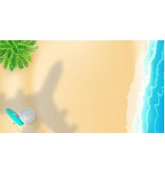 sea shore and shadow plane over beach vector image
