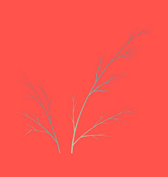 Flat dill isolated hand drawing flavoring plant vector