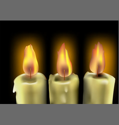 tree burning candles vector image vector image
