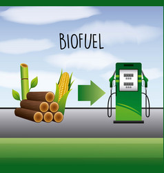 Biofuel ecology alternative vector