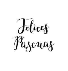 Calligraphy hand-drawn felices pascuas lettering vector