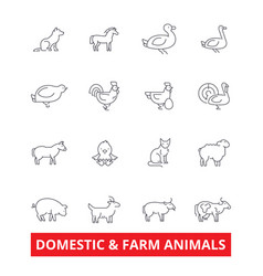 domestic farm animals line icons cow dog cat vector image