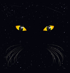 Eyes a cat on a background space vector