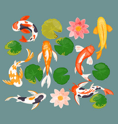 koi carp fishes set asian prosperity fortune vector image