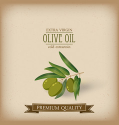 olive branch oil label cartoon style vector image