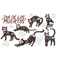set cats day dead isolated vector image