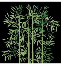 The top of the bamboo vector image