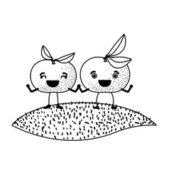 White background of monochrome pair of tangerine vector
