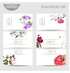Business cards with floral elements vector image vector image