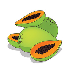 Isolate papaya fruit vector