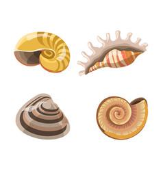 shells or seashells isolated icons vector image