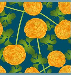 yellow ranunculus flower on indigo blue background vector image vector image