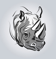 head of a rhinoceros vector image