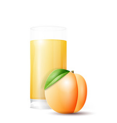 Apricot and glass juice vector