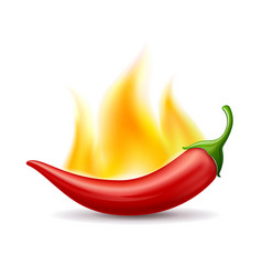 chili peppers red fire design isolated on white vector image
