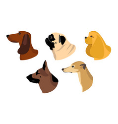 dogs icons in flat style set dachshund vector image
