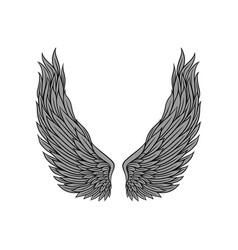 Large angel wings gray feathers and black contour vector