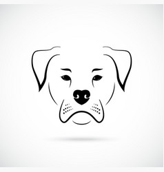 muzzle american bulldog on white background dog vector image