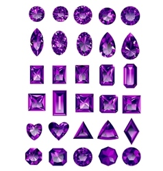 Set of realistic purple amethyst jewels vector image