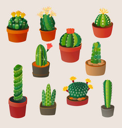 cute cartoon cactus home plant nature vector image