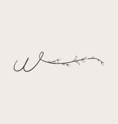 Hand drawn floral w monogram and logo vector